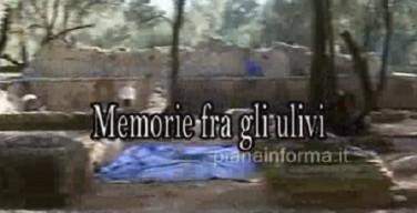 Memorie fra gli ulivi gli scavi archeologici di Oppido Mamertina