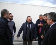 """Olivicoltura, Statti: """"Scendiamo in piazza per difendere il futuro della Calabria"""""""
