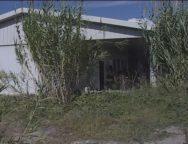 Rosarno, stabile per migranti abbandonato all'incuria e ai vandali: occupato dai senzatetto