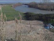 San Ferdinando, l'emergenza ambientale continua con il fiume mesima
