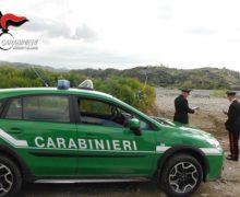 Carabinieri forestali. tre deferimenti