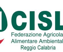 """Fai Cisl Calabria: """"è urgente avviare il Tavolo Agroalimentare regionale"""""""
