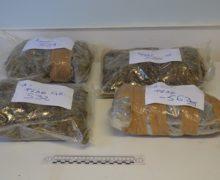 Polizia di Stato: arrestate a Roghudi due persone per violazione della normativa in materia di stupefacenti