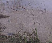 San Ferdinando, il fiume Mesima continua a inquinare