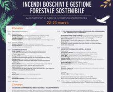 """""""Incendi Boschivi e Gestione forestale sostenibile"""": nel Parco dell'Aspromonte la seconda tappa che precede il Convegno Nazionale Federparchi"""