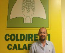 Fabio Borrello presidente della Federazione Coldiretti delle province di Catanzaro-Crotone e Vibo Valentia