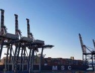 E' giunta a Gioia Tauro la container ship MSC Maya, tra le più grandi navi che abbiano mai toccato l'Italia.