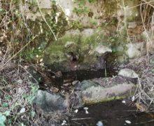 Palmi, bonifica messa in sicurezza idrica e valorizzazione ambientale del torrente San Miceli