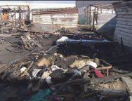 San Ferdinando, incendio alla baraccopoli. Un morto