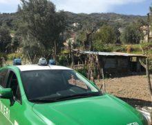 Bagaladi. Due deferimenti da parte dei Carabinieri forestali.