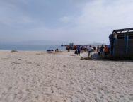 Rinascimento Gioiese, Adventures Verdi in spiaggia a Gioia Tauro