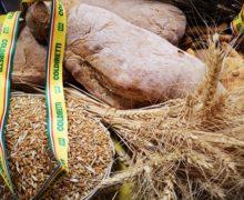 Pane e prodotti da forno:firmato protocollo d'intesa tra Coldiretti e Assopanificatori-Confesercenti a Reggio Calabria