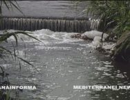San Ferdinando e Nicotera, continua l'inquinamento del mare a causa del Mesima e del Vena