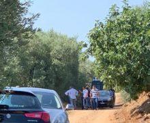 Duplice omicidio in Calabria Vittime un sorvegliato speciale e un imprenditore