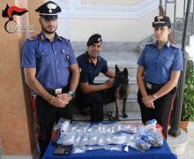 Palmi, un arresto per evasione dei domiciliari