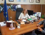 CONVENZIONE TRIBUNALE DI PALMI COMUNE DI GIOIA TAURO LAVORO DI PUBBLICA UTILITA'