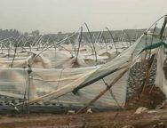 Tromba d'aria a Cariati(CS): distrutti 6 ettari di serre
