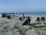 Gioia Tauro, pulizia spiaggia