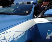 """Ndrangheta: Operazione """"HAPPY DOG"""". Interessi della 'ndrangheta nel settore canino."""