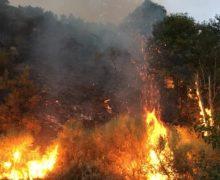 Molti incendi a causa di temperature alte