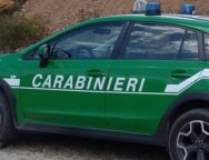 Reggio Calabria – Incendiano un capannone industriale dismesso. Arrestati mandante ed esecutore.