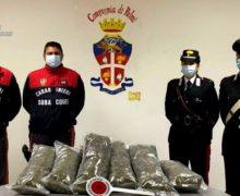 Trasportavano droga su una barca. Arrestati due uomini e sequestrati 10 KG di marijuana