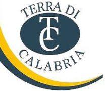 L'associazzione Terra di Calabria fa un bilancio dell'anno 2020