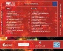 """""""ANGELI CUSTODI"""" – Tanti big della musica italiana insieme in un doppio cd  Il ricavato andrà a sostegno del Fondo #NoicongliInfermieri"""