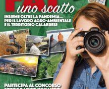 La Fai Cisl Calabria bandisce un concorso fotografico regionale per giovani e lavoratori del sistema agro-ambientale