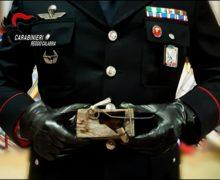 Taurianova. I Carabinieri denunciano un agicoltore: Nascondeva 72 ghiri in un casolare, catturati illegalmente