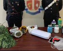 Gioiosa Jonica: l'odore di marijuana attira i Carabinieri.