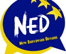 Ned: Incontro convenzione di Istanbul, un ponte tra tecnici e politici per difendere la convenzione