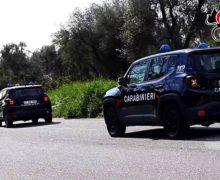 Controlli dei Carabinieri alle aziende agricole del territorio della piana: Sanzioni fino a 14000 euro