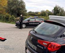Gioia Tauro, intensificati i controlli dei carabinieri: Arresti  denunce e sanzioni amministrative. Rinvenuti 50 grammi di cocaina in abitazione