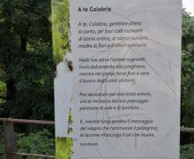 """Cittanova, """"Le Vie dei Poeti"""": Indignazione per l'atto vandalico su un pannello"""