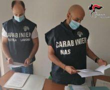 Reggio Calabria: Lavoratori in nero e con il reddito di cittadinanza, sanzioni ad una azienda di impor-exportt