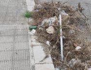 Palmi, il quartiere Viale Calabria-Via Palmi sommerso di rifiuti, protestano i cittadini